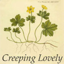 Creeping Lovely