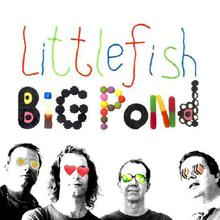 Little Fish Big Pond