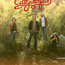 Cattywompus