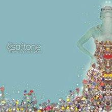 the SOFTONE