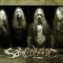Sarcolytic