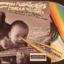 The Flaming Lips, Stardeath & White Dwarfs