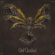 Owl Oxidant