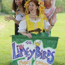 The Limeybirds
