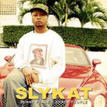 Sly Kat