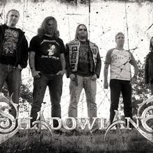 Shadowbane