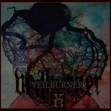 Veilburner