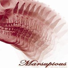 Marsupious