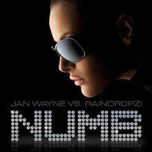 Jan Wayne vs. Raindropz