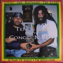 Tenor Fly Meets Congo Natty
