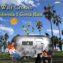 Walt Cronin