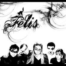 Felis