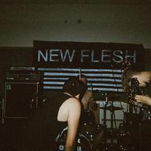 New Flesh