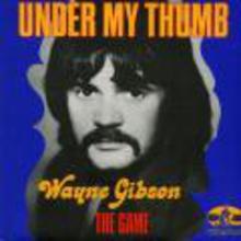 Wayne Gibson