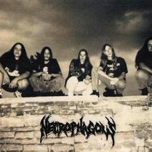 Necrophagous