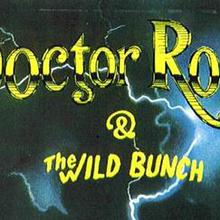 Doctor Rock And The Wild Bunch