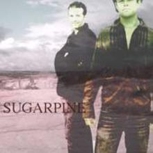 Sugarpine