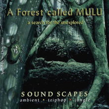 A Forest Called Mulu