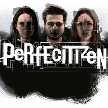 Perfecitizen