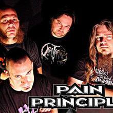 pain principle