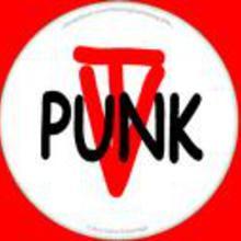 The Vigilante Punks