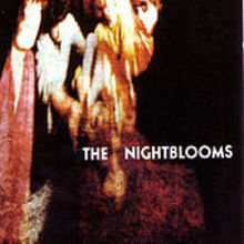The Night Blooms