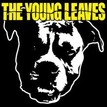 The Young Leaves